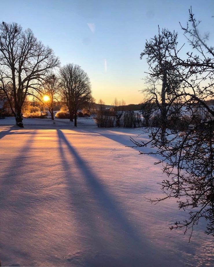 Soluppgång i vintern med utsikt över trädgården runt Herrgården